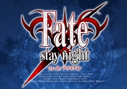 Screenshot from the main menu of Fate/Stay Night video game.